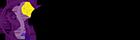SOFIA NATENSON 140x40